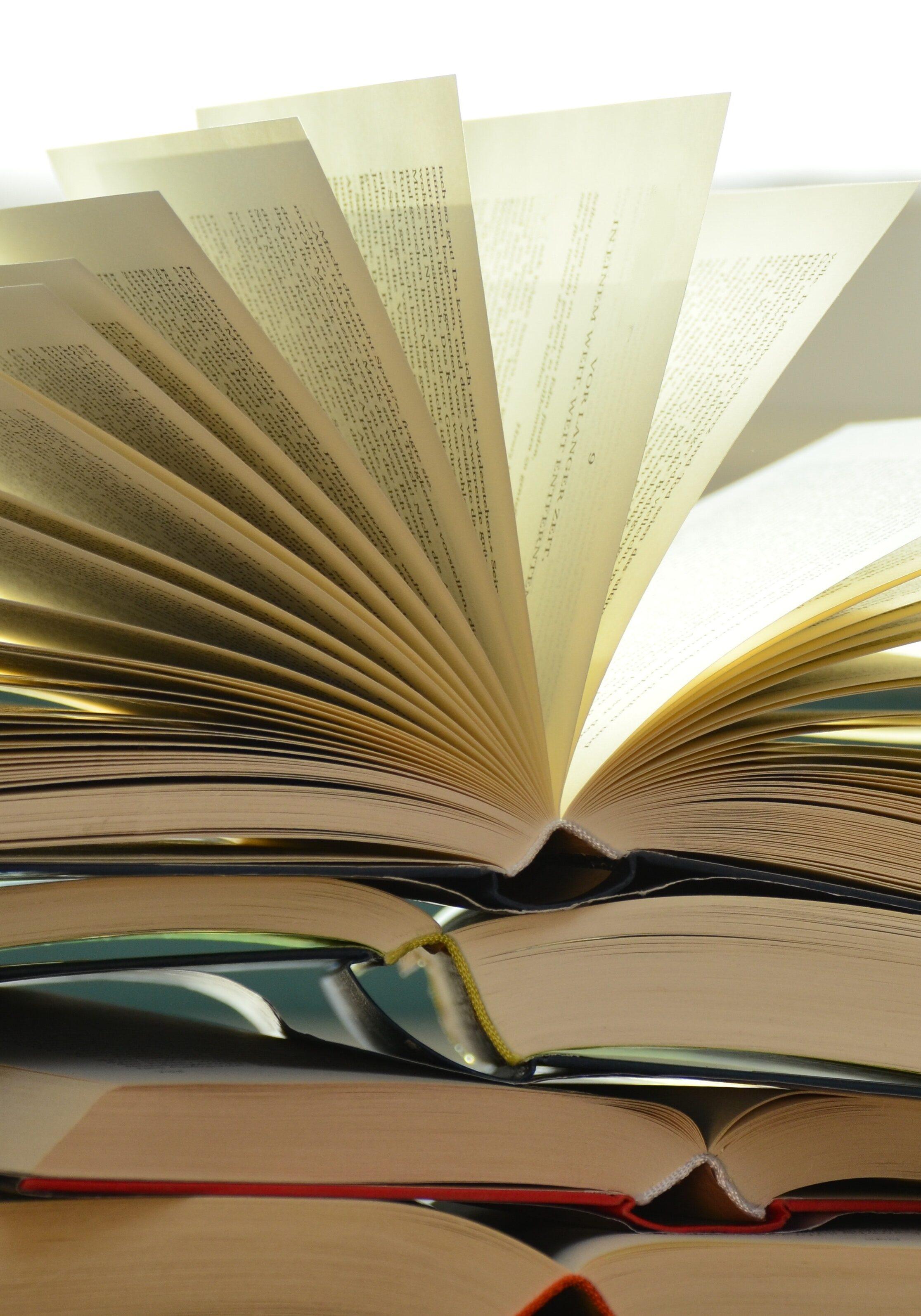 pile-of-books-159866 (1)
